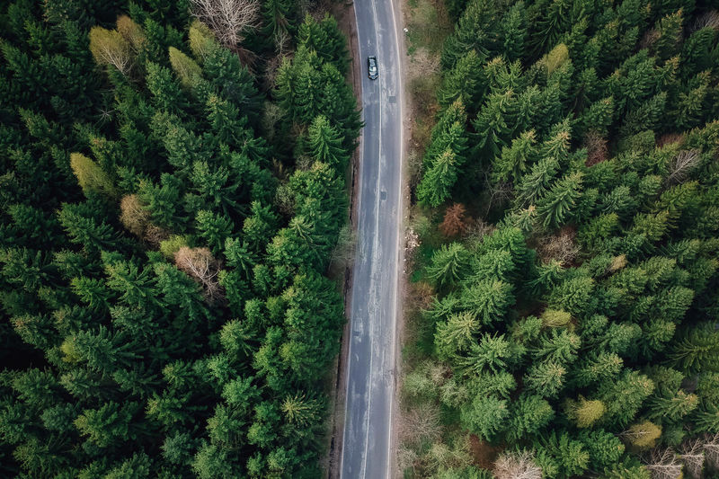 Aerial mountain road at sunrise Autumn Cars Colors Curve Road Romania Transportation Travel Aerial Brasov Day Destination Forest Mountain Nature Roadtrip Spring Summer Tree