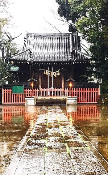 Shrine Architecture Built Structure Water Reflection_collection Rain Rainy Days Puddke The Way Forward Japan Tokyo Tranquility Tranquil Scene Reliigious Shinto Shrine Shinto IPhone7Plus Iphonephotography Iphone7plusphoto IPhoneography Reflection Water Reflections Rainy Day