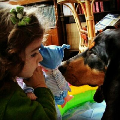 Kids Love Dogs My Dog A Dogs Life My Dogs Are Cooler Than Your Kids Galicia Vigo Hound