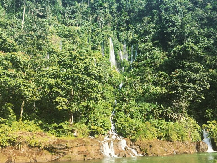 Waterfalls In Philippines Waterfall Beauty In Nature Water Green Color Nature Outdoors