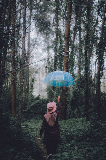 Rear View Of Woman With Umbrella Standing In Forest