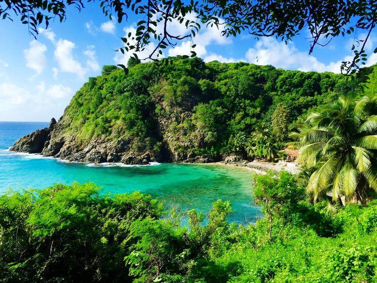 Beach Sea Sea And Sky Blue Sky Green