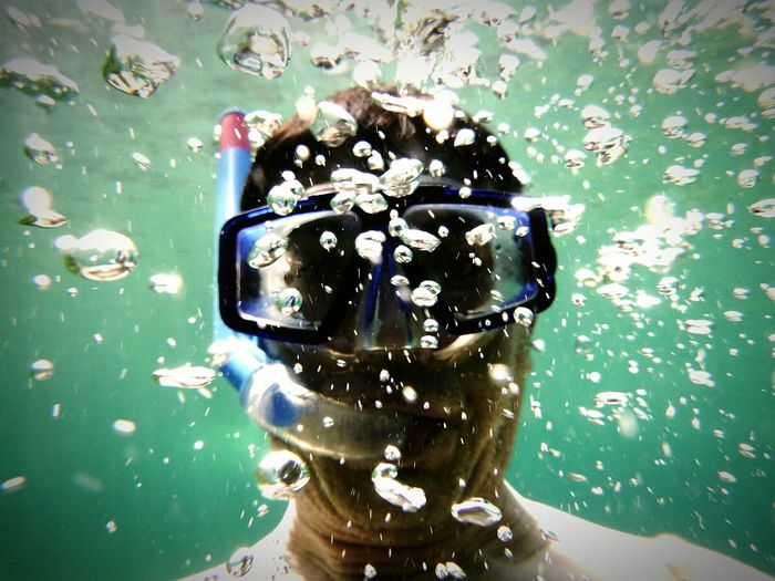 UnderSea Water Swimming Scuba Diving Underwater Close-up