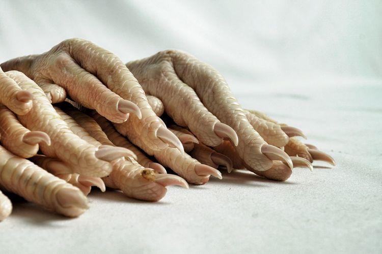 kurczak 08 Scales Claw Selective Focus Fingers Hand Reptilian Avian Texture Skin Stark Foot Feet Bird Feet Chicken Feet Body Part Food And Drink Nature Food