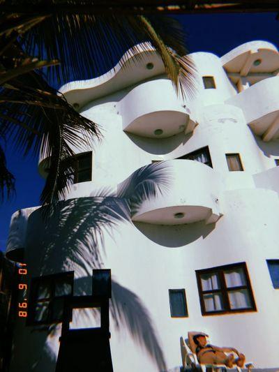 Hotel Hostel Beach Hostel Summer Bird Close-up Sky Building Exterior Building