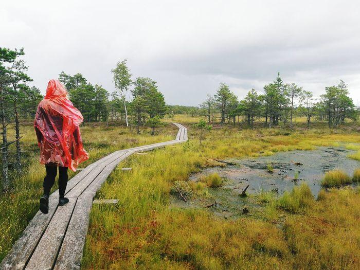 Red Walking Naturelovers Swamp Photos