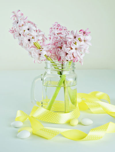 Fresh hyacinth flowers in glass jar with yellow ribbon Easter concept Easter Hyacinth Flower Pink Ribbon Blossom Candy Close-up Day Egg Flower Flower Head Fragility Fresh Freshness Indoors  Jar Nature No People Petal Springtime Studio Shot Summer Vase Vertical Yellow