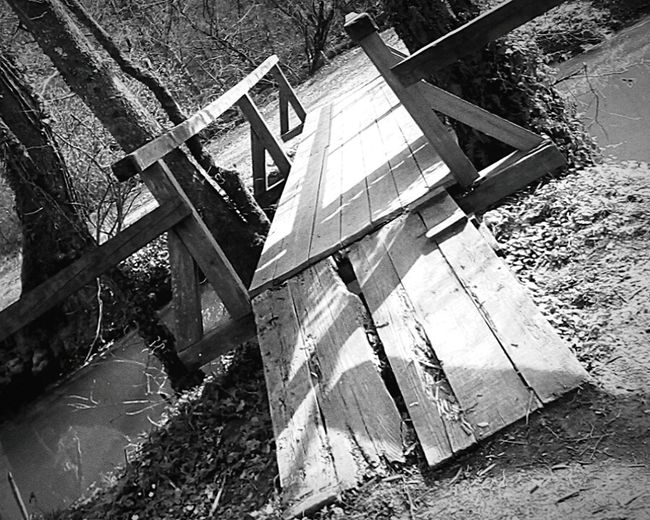 Found On The Roll Bridge Otocec Old Photo Wood Bridge River Trees Beauty In Nature In Touch With Nature