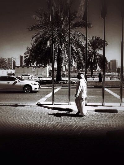 Dubai Street Photography Black And White Palm Trees