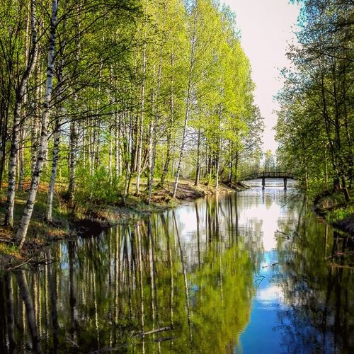 reflection Beauty In Nature Photography Nature Photography Photographer Finnish Nature Naturebeauty Day Landscape_photography Water Reflections In The Water Reflection