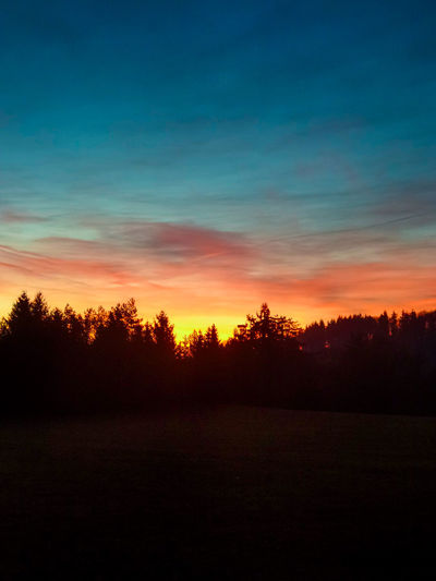Have a nice day! 😀 Sunrise_Collection Sunrise Silhouette Nature Showcase: January