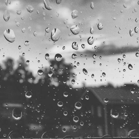 Raindrops On My Window Black & White