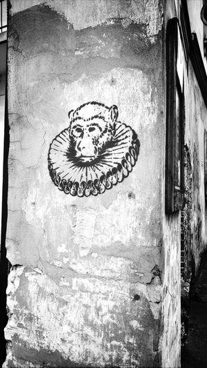 Light And Shadow Streetart/graffiti Streetart The Street Photographer - 2015 EyeEm Awards