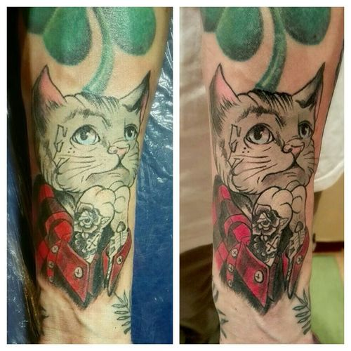 Котан свежий/заживший татуировка котан