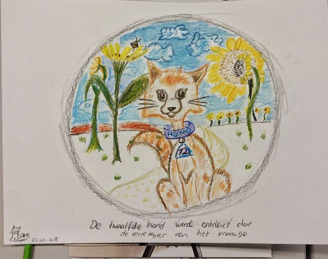 And the old lady and the 11 dogs waited and waited until the periscope revealed the 12th creature named Dog... Cats Of EyeEm Cat Drawing Aquarel Pencil Aquarel Colorful Round Vignette Sunflower Cat (c) 2018 Shangita Bose All Rights Reserved Periscope From My Point Of View Illustration Drawings Cartoon Crosshatching Animal Themes Snbcrea Snbgraffiti Air Science No People Close-up Day Astrology Sign
