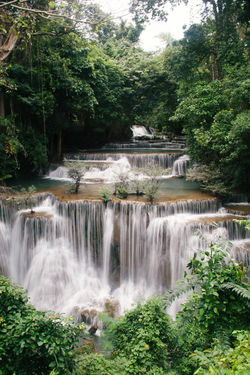 Thailand Beauty In Nature Day Flowing Water Forest Freshness Green Color Growth Long Exposure Lush Foliage Motion Nature No People Outdoors Plant Power In Nature Rapid River Scenics Tranquil Scene Tranquility Travel Destinations Tree Water Waterfall