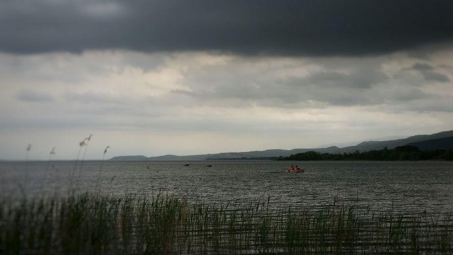 Nature Sapanca Lake Seaside Rainy Day