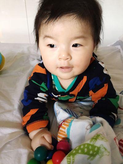 ハイハイの準備👶🏻 Childhood Innocence Babyhood Babyboy Mysweetbaby Ready To Crawl Cute Love ♥