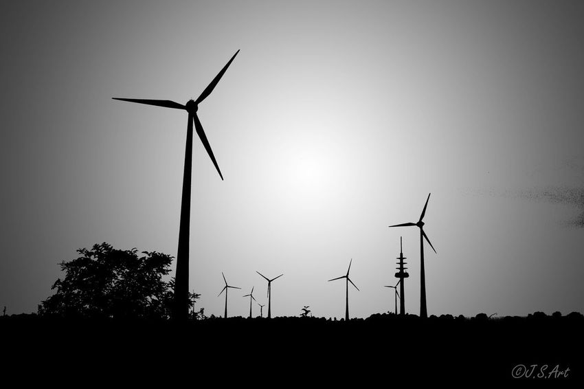 Fuel And Power Generation Renewable Energy Alternative Energy Wind Turbine Environmental Conservation Wind Power Windmill Industrial Windmill Technology Sustainable Resources Traditional Windmill Rural Scene Silhouette Turbine Outdoors Electricity  Environmental Issues No People Nature Sunset Black First Eyeem Photo Blackandwhite Black And White Black & White Investing In Quality Of Life