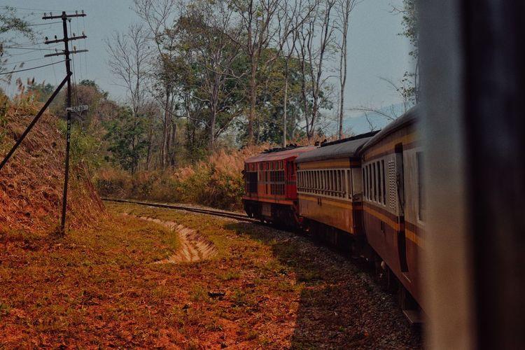 Tree Railroad Track Rail Transportation Train - Vehicle Sky Passenger Train Railway Signal Train Moving Train Track Metro Train