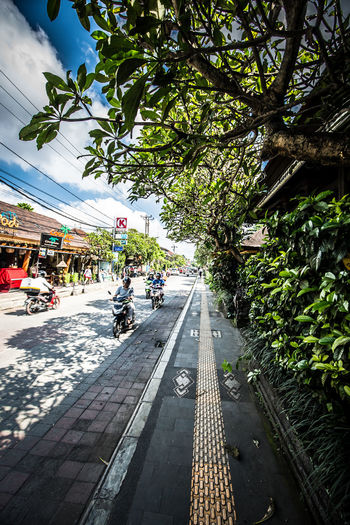 Ubud Central: Pedestrian's Perspective City City Life Day Diminishing Perspective Footpath Green Color Growth Lifestyles Nature Outdoors Plant Sky Sunny The Way Forward Tree Vanishing Point Walkway Finding New Frontiers The Street Photographer - 2018 EyeEm Awards The Traveler - 2018 EyeEm Awards