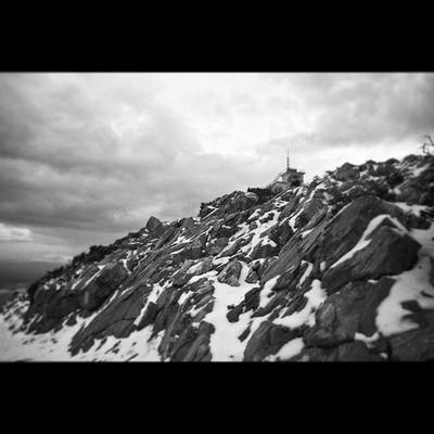Nature Beauty Weather Instagrammers Igers Tagsforlikes Instagood Android Instagood Composition Focus Capture Winter Snow Tree Narlıdere Izmir Çatalkaya Landscape Naturelovers Canon 7D Picoftheday Photooftheday Monochrome bw bnw bestbw bestofday blackandwhite