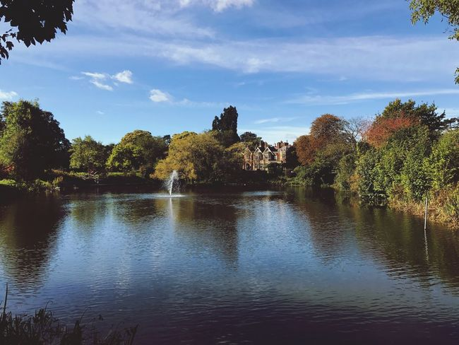 Bletchley Park Tree Water Tranquil Scene Nature First Eyeem Photo