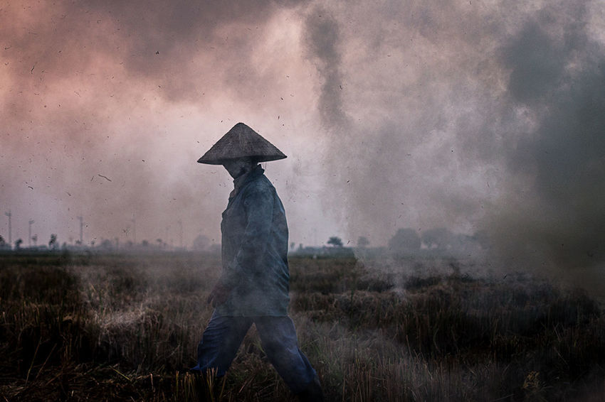 "In a farm near the ancient capital of Vietnam ""Cõ Loa"" 