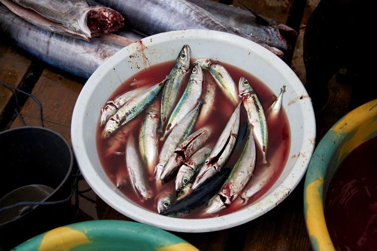 High angle view of dead sardines in bucket for sale at fish market
