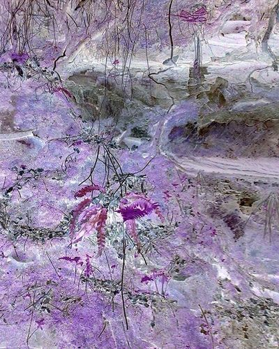 Colours Fairy Fairy Land Textures Textures And Surfaces Beauty In Nature Day Faerie Faerie Land Fantasy Flora Floral Flower Flowers Nature No People