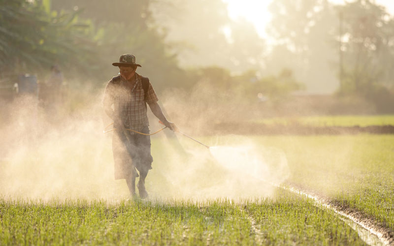 Man working on grass in water