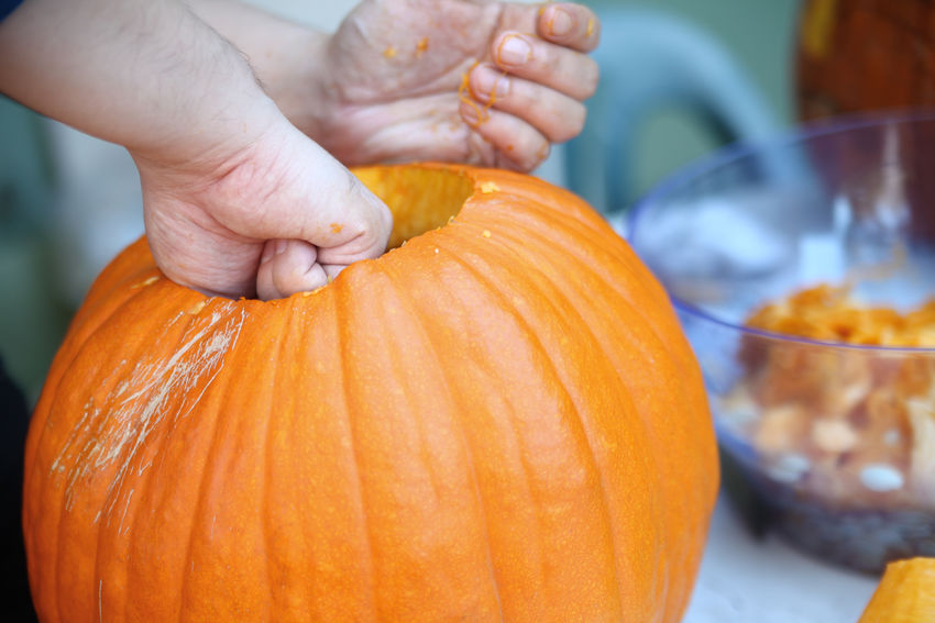 Man prepares Halloween pumpkin for carving American Culture Autumn Close-up Craft Fall Fingers Halloween Hands Holding Holiday Tradition Jack O' Lantern Leisure Activity Man Messy October Orange Color Outdoors Outdoors Photograpghy  Pumpkin Carving Seasonal Textures