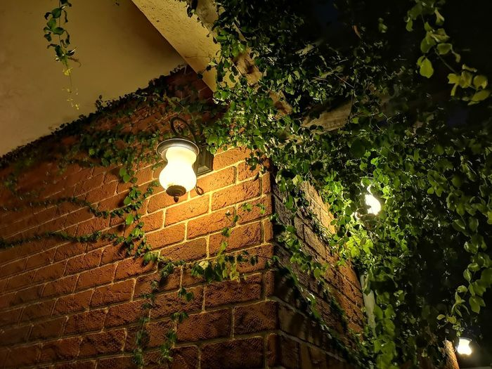 Low angle view of illuminated light by building