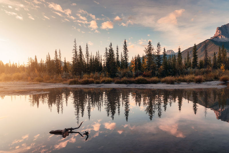 Sunrise on rocky mountains and autumn forest reflection on the river at national park