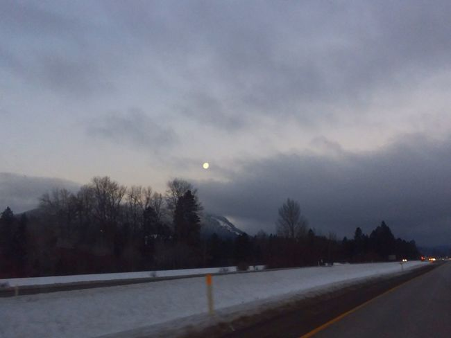 A beautiful drive Cold Temperature Winter Ice Frozen Snow Nature Sky Moon Shades Of Winter