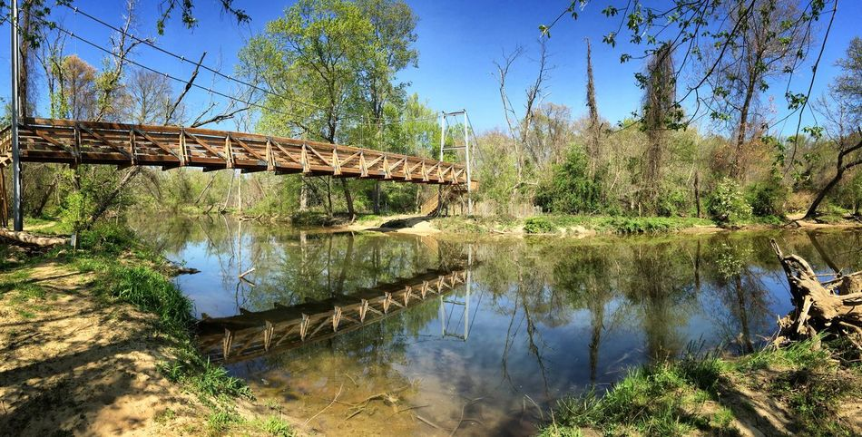 Architecture Beauty In Nature Blue Bridge Bridge - Man Made Structure Built Structure Calm Connection Day Engineering Footbridge Growth Nature Non-urban Scene Outdoors Reflection River Scenics Stream Tranquil Scene Tranquility Virginia Water WoodLand