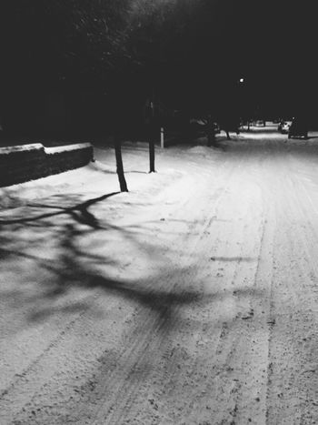 Night shadows Night Shadow Outdoors Sunlight Winter Nature Snow Cold Temperature Tree