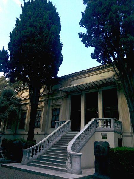 Istanbularkeolojimuzesi Aslan Heykeli MerdivenlerGetting Inspired Stairs Istanbularcheologymuseum