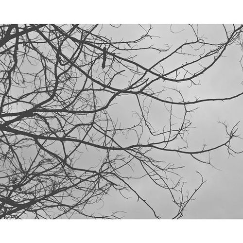 No one wants to die. Love that too. Lookup Wannabe Lovethattoo Hipster Canon700D ArmWatcharapong