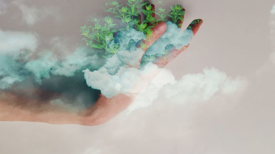 Digital composite image of hand holding a fresh green plants against clouds