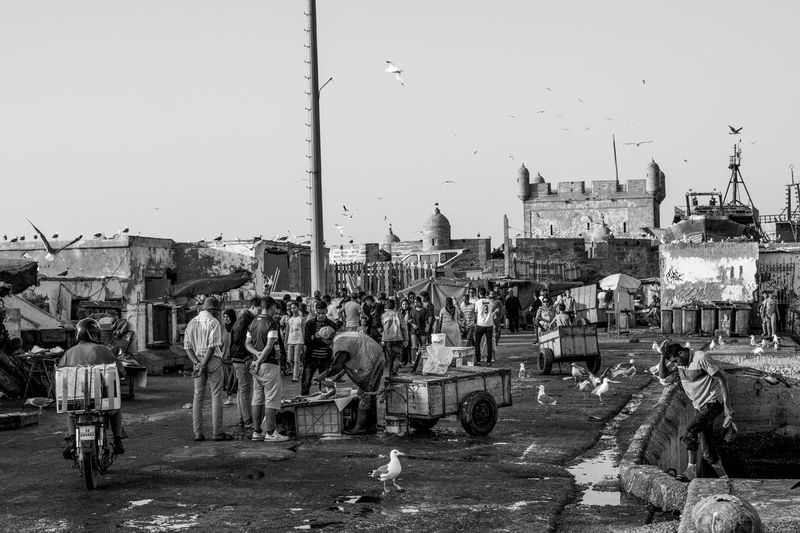 Street scene at the port of essaouira Fisherman came back from fishing and sell directly on the dock. Fuji Film EyeEm Gallery EyeEm Best Shots Streetphoto Streetphotographers Photography Streetphoto_color Streetphotography Photojournalism Port Travel Destinations Travel FUJIFILM X-T2 Fujifilm_xseries Fujifilm Journalism Fuji Morocco Photooftheday Discovery Architecture Building Exterior City Built Structure Sky Day Crowd Street Group Of People
