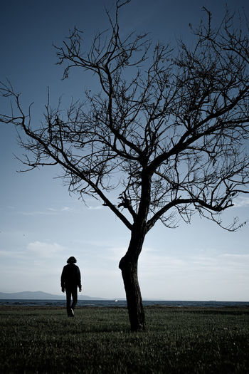 Rear view of silhouette man standing on field against sky
