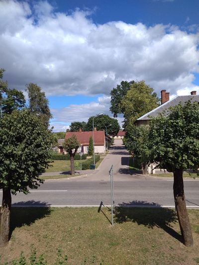 This Is My Street Tree Sky Cloud - Sky