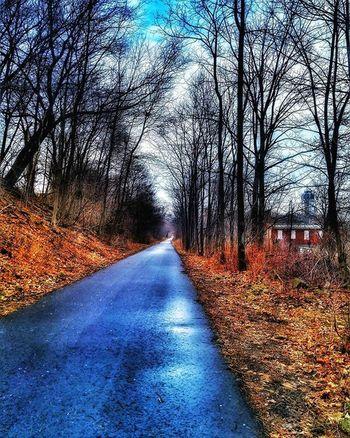 Just a day on mah trail HamOnt Trail Railtrail Solitude Longwalk Perspective Vanishingpoint