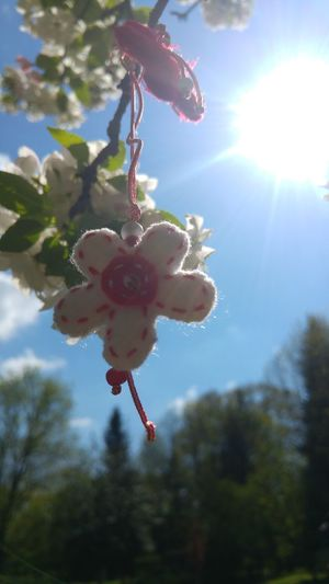 Martenitza Tree Hanging Red Close-up Sky Blooming