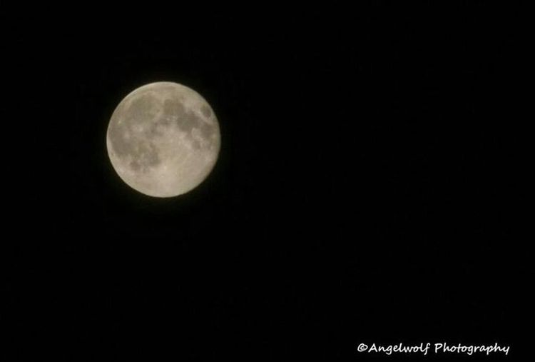 Moon Full Moon Nature_collection Eye4photography  EyeEm Nature Lover EyeEm Best Shots We Are Photography, We Are EyeEm Supermoon 2013 How Near... How Far