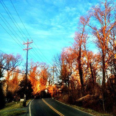 Afternoon sun. #iphoneography #jomo #silverspring Sun Weather IPhoneography Afternoon Trees Spring Silverspring Jomo