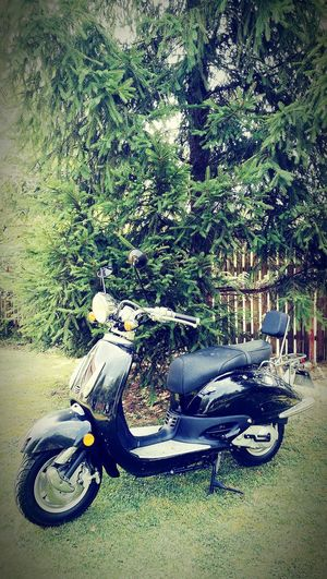 Ride With Me Motorcycle Vintage Motorcycle Oldies But Goldies Let's Go Take Me Away Escape The City Enjoying Life Follow Me Ride Together Just You And Me Sky Is The Limit Fun On Wheeles Just Go Collectible Vintage Memories