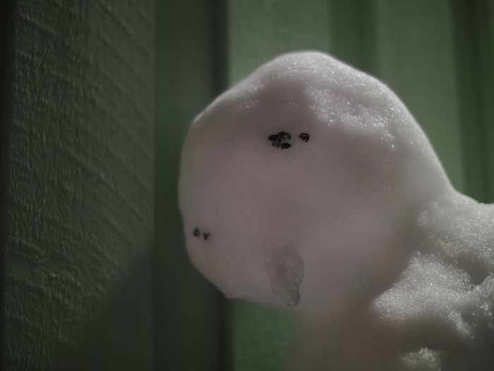 The melting... Close-up One Person Indoors  Day Sadness Melting Snowman  Melting Snow Shallow Depth Of Field Snowman⛄ Human Representation Snowman