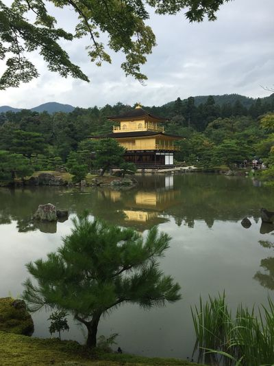 Golden House Golden Kyoto Tree Plant Water Lake Reflection Architecture Built Structure Nature No People Travel Destinations